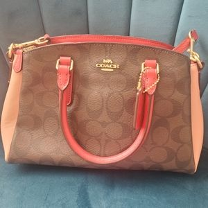 Adorable Minnie Sage handbag